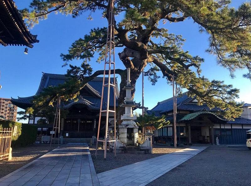 藤枝大慶寺